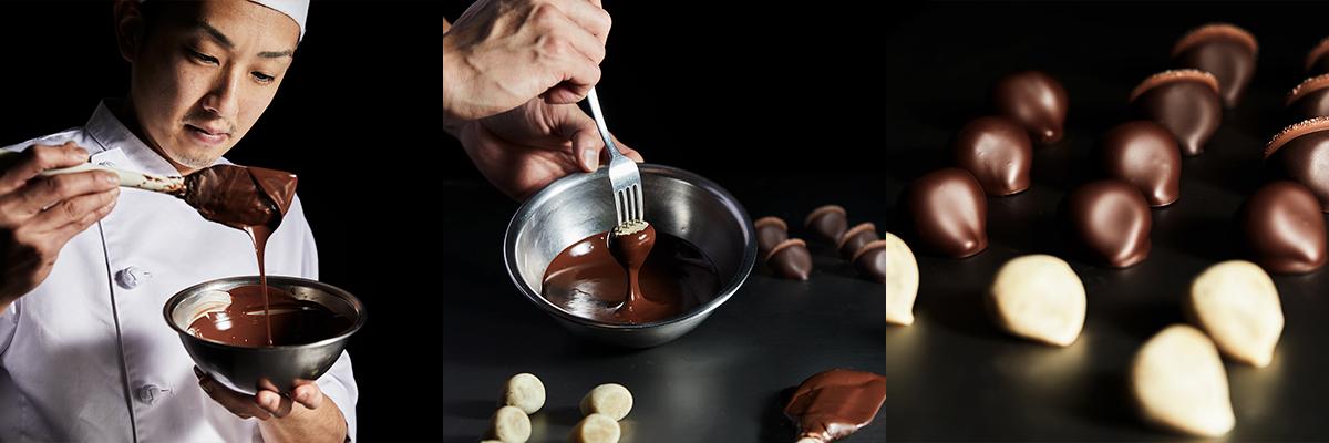 chestnut choco